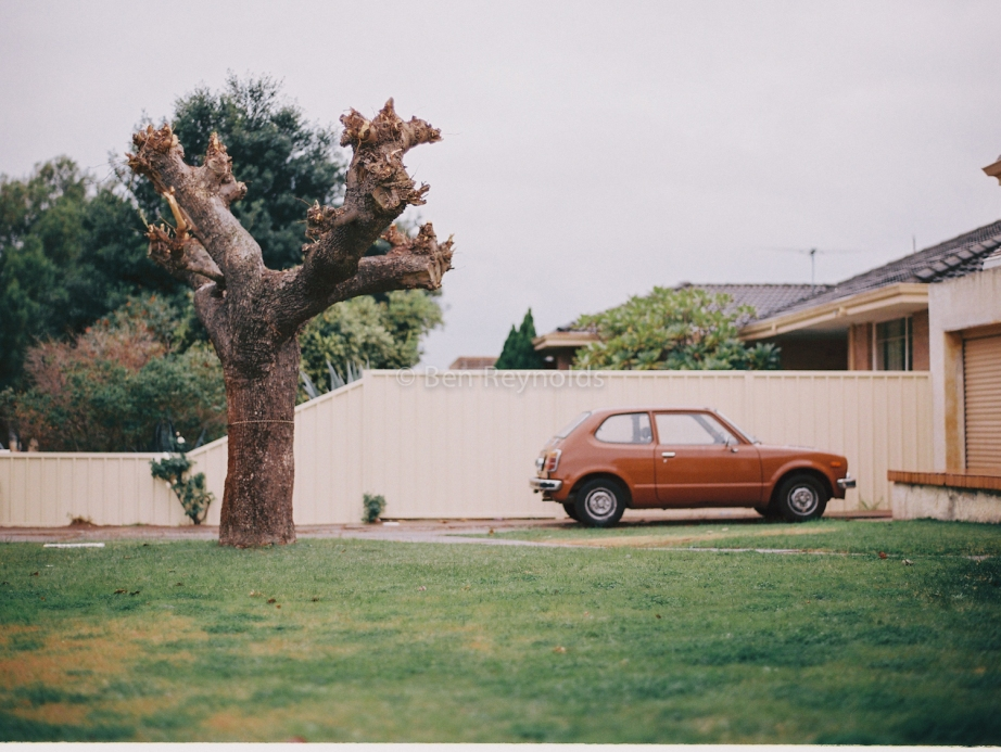 Portrait_of_Cars_2-4