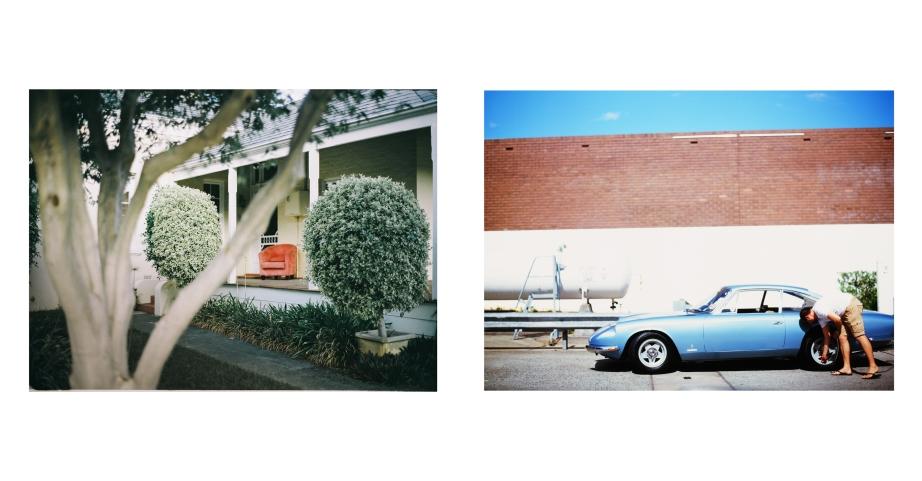 portrait_of_cars-6